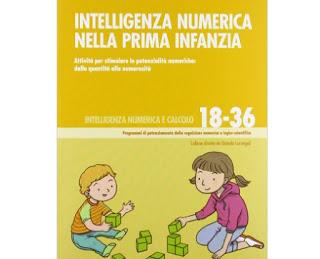 intelligenza numerica il libro